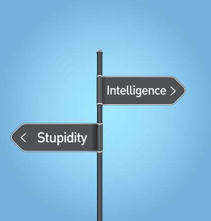 an overview of the advantages and disadvantages of stupidity